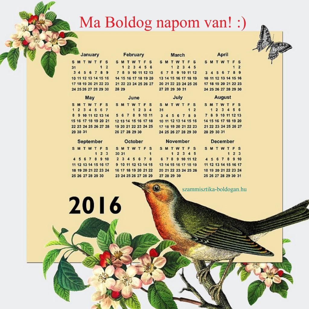 2016-os naptár, számmisztika