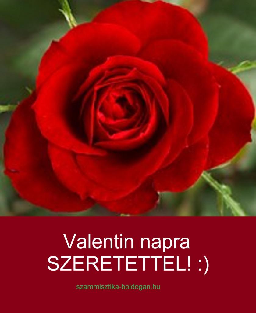 valentin napra 2, számmisztika