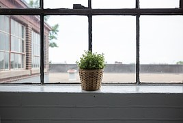 window-839824__180