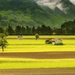 landscape-176602__180